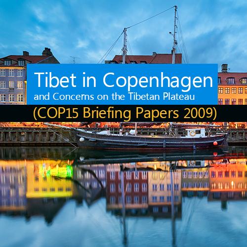 (COP15 Briefing Papers 2009)