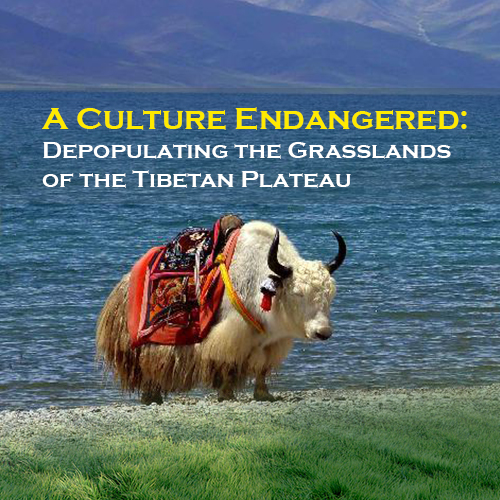 A Culture Endangered: Depopulating the Grasslands of the Tibetan Plateau