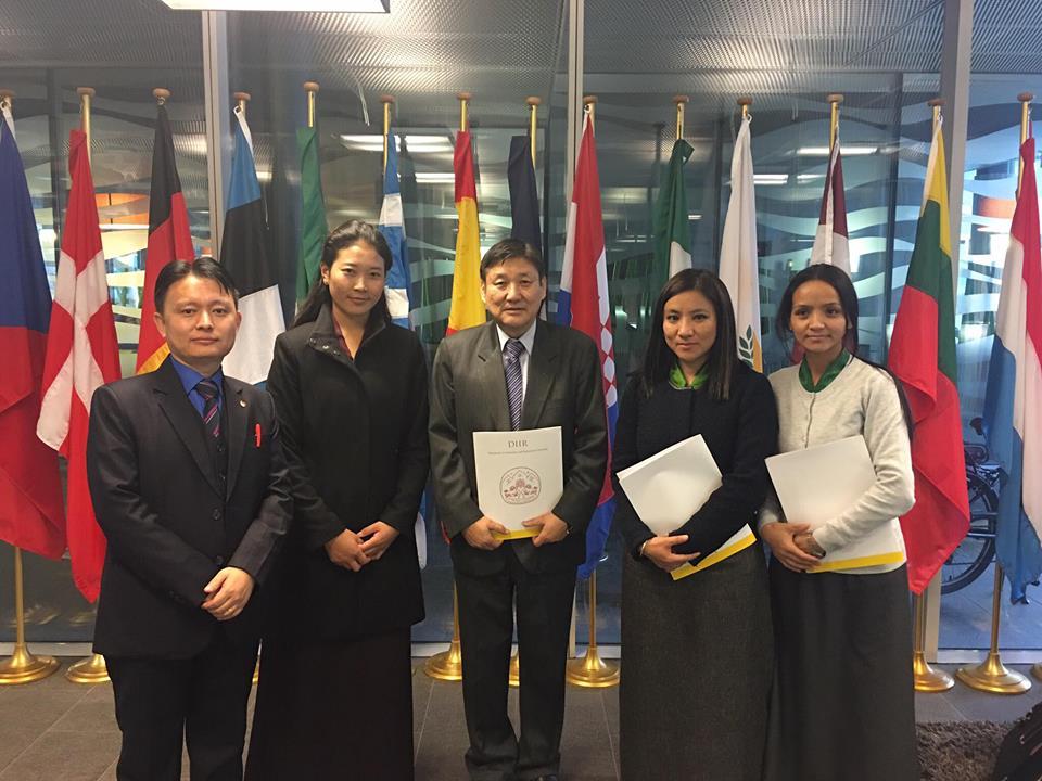 DIIR Delegation at the EU Delegation Office