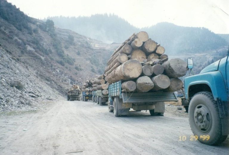 https://tibet.net/wp-content/uploads/2019/04/Logging-picture-in-Tibet-1999-768x522.jpg