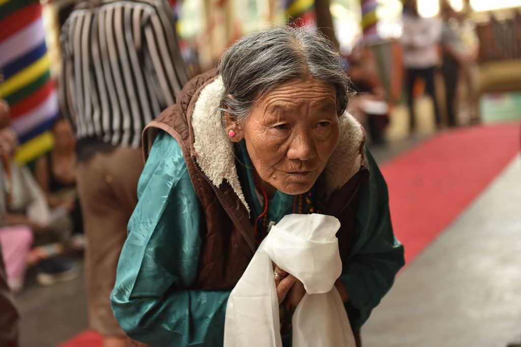 An elderly Tibetan bowing before His Holiness the Dalai Lama to show her great devotion and respect to him, 13 September 2019. Photo/Tenzin Jigme Taydeh/CTA
