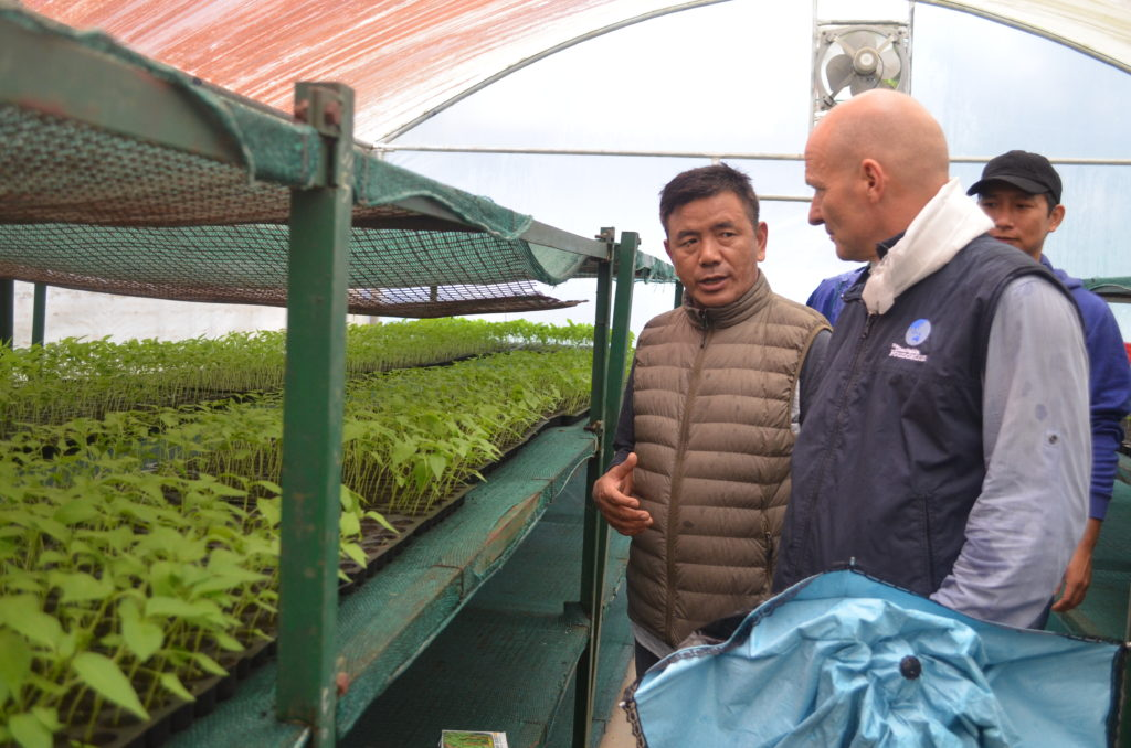 Explaining organically raised vegetable seedling to Mr. Pedersen, CEO of TCF during his visit to ORTC Bylakuppe in 2018.